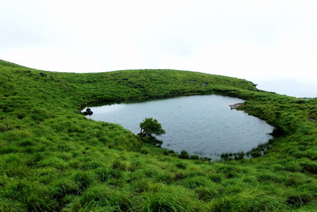 Chembra Peak, Wayanad A Travel Destination